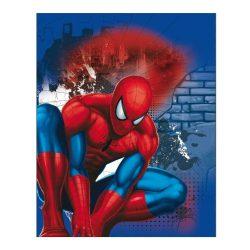 Gyerek kétoldalas takaró Spiderman 120x150 cm