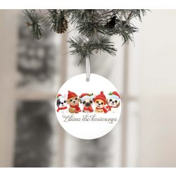 Egyedi névre szóló karácsonyfadísz - Karácsonyi kiskedvencek